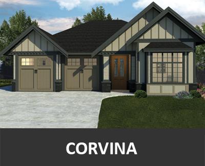 Corvina Image